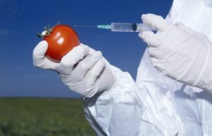 GMOOMGEventCoverage1
