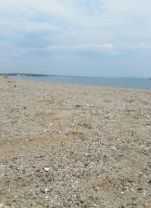 Short Beach in Stratford, CT. Where I receive most of my sunburns.