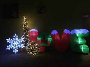 """This """" Love """" inflatable, provided by Simplified Entertainment, greeted every visitor as they walked in."""